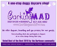 Barking Mad Doggy Daycare & Boarding