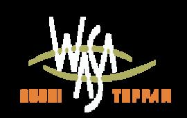Wasa Sushi & Teppan