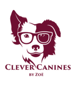 Clever Canines by Zoë Dog Training