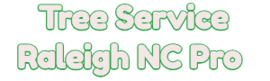 Tree Removal Raleigh NC Pro